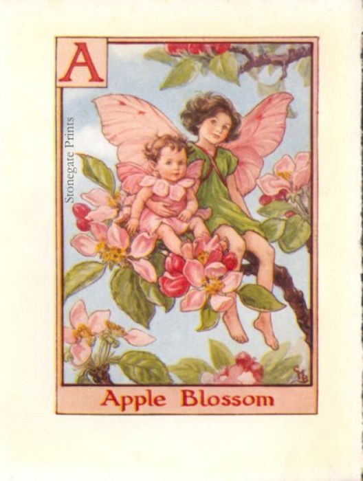 C.M. Barker Apple Blossom Fairy